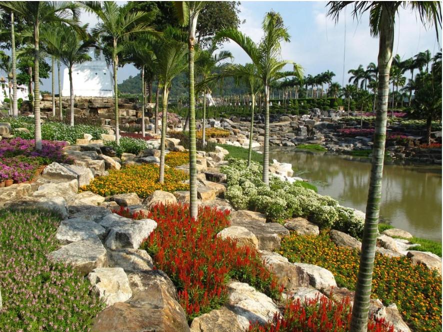נוף בגן הבוטני הטרופי הונג נוח